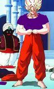 Goku new gi