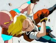 Krillin and 18 explosion