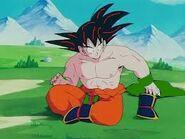 Goku clothing