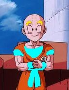 Krillin at universal tourny