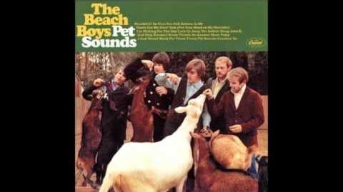 The Beach Boys - God Only Knows (Lyrics via Description) (HQ)