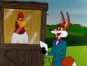 Fox Quiz Presenter