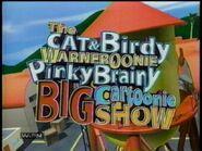 BigCartoonieShow