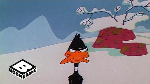 Looney Tunes Classic Hunting Season Boomerang