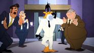 Working Duck (40)