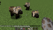 Wolfplayermodel