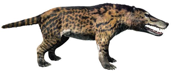 File:Mongol's Beast.jpg