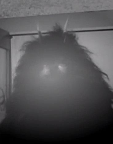 File:Hairy Creature.png