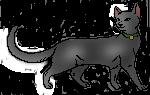 File:Rainshine.Kittypet.png