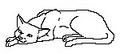 Thumbnail for version as of 18:25, November 19, 2011