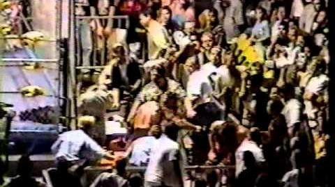 Hollywood Hogan vs