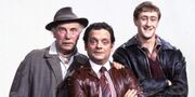 O-ONLY-FOOLS-AND-HORSES-facebook-1-