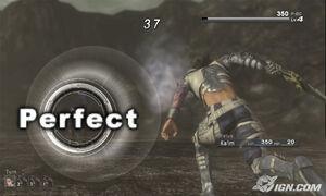PerfectHit