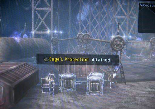 File:Sages-protection.jpg