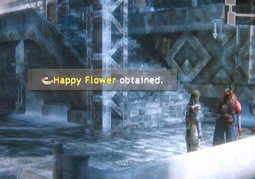 File:Happy-flower.jpg
