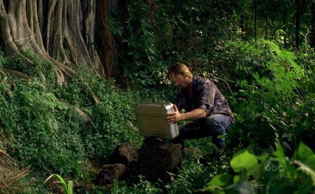 Archivo:Sawyer the case.JPG