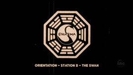 Swan orientation.jpg