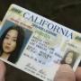 Archivo:Mini-Sun-drivers-license.jpg