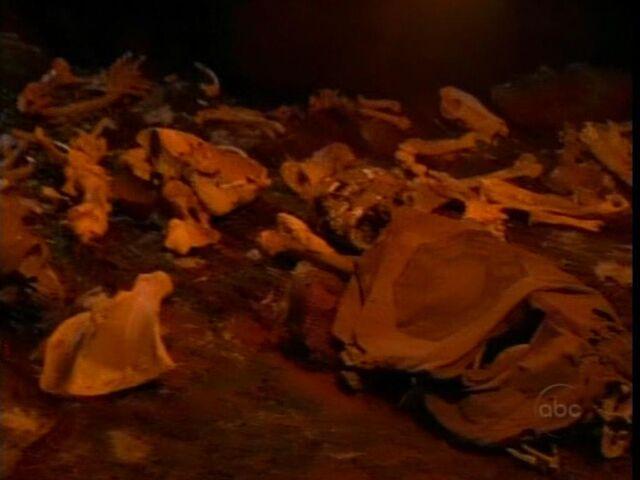 File:Bones in Cave.JPG