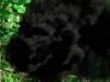Monster-portal