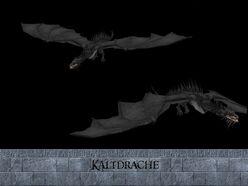Kaltdrache the dragon