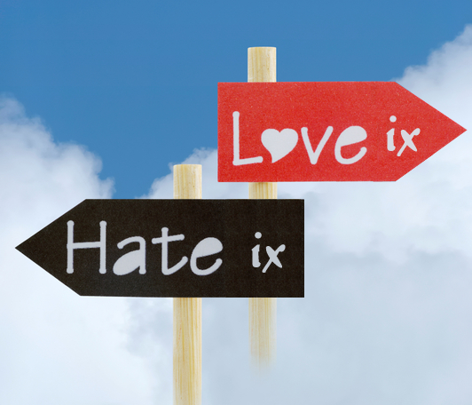 File:Love hate.png
