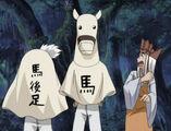 HorseandAss