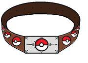 Pokemon Rp belt