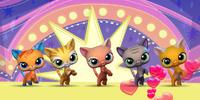 Fun Felines