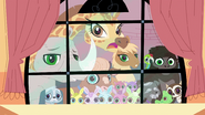 Animals at the window