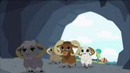 Mountain goats leave