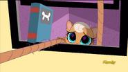 MeowMeowSeesBlythe