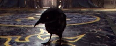 Medivh Crow
