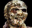 Worm Eyed Zombie