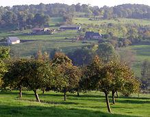 Normandie-tourisme-pays-d-auge-paysage-9
