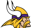 Minnesota Vikings (2013)