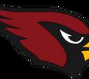 Arizona Cardinals (2012)