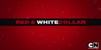 Red & White Collar