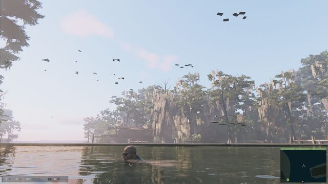 File:Floating Debris Bug.jpg