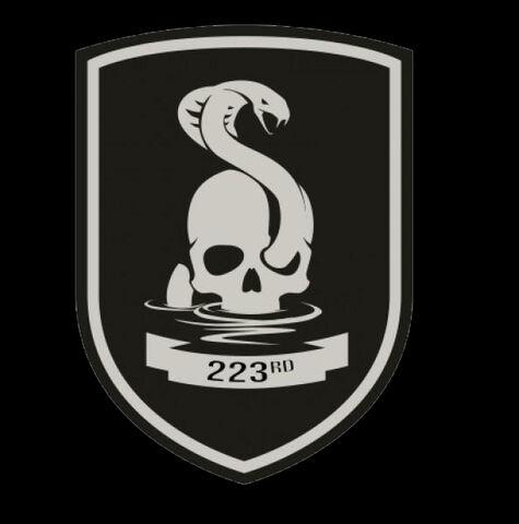 File:223rd Logo.jpg