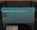 Adrenaline Storage 3-3.jpg