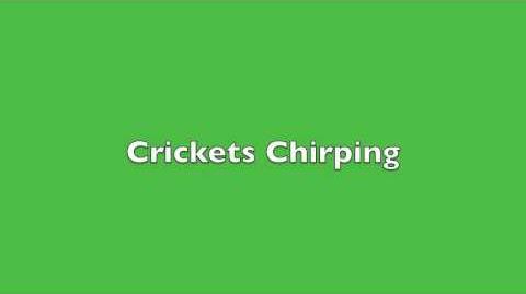 Crickets Chirping Sound Effect