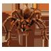 Item tarantula 01