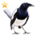 Item jailbird gold 01
