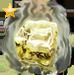 Item acidice gold 01