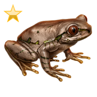 Huge item natalforestfrog gold 01