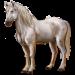 Item caballo 01