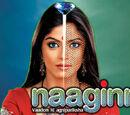 Naaginn - Waadon Ki Agniparikshaa