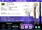 Magical Girl Lyrical Nanoha StrikerS Shamal profile1