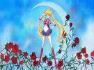 Sailor Moon Crystal Moon Prism Power transformation pose (Crystal Power)
